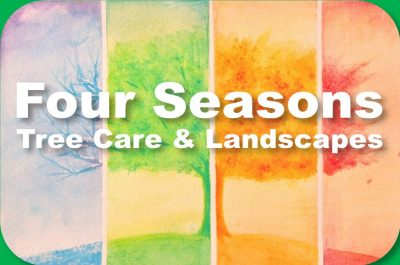 Four Seasons Tree Care and Landscapes